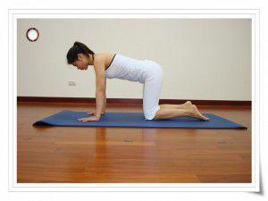 扭腰轉體式(瑜珈動作圖解-瑜珈教學7-腰臀曲線)