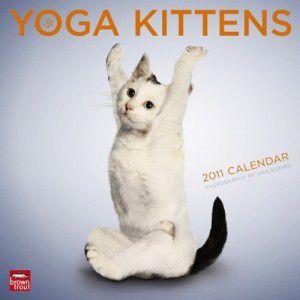 Yoga Kittens 2011
