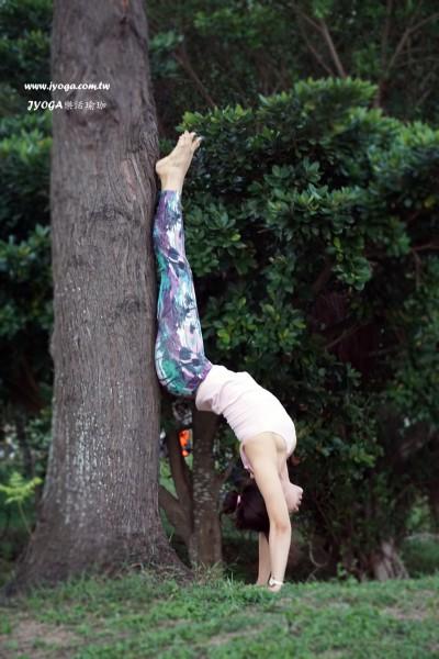 台南JYOGA樂活瑜珈-瑜珈教學-倒立後彎(hollowback))
