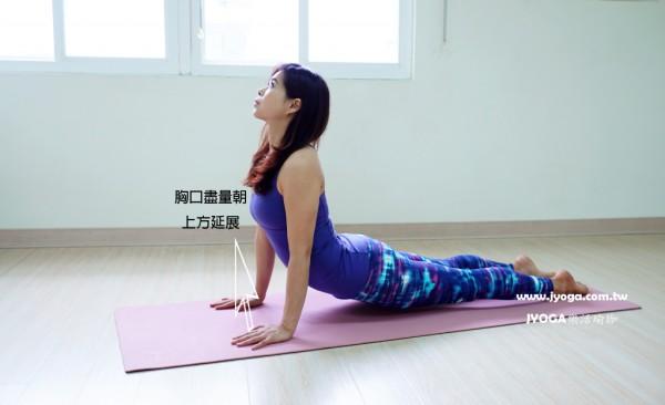 台南JYOGA樂活瑜珈-瑜珈教學-上犬式-Upward Facing Dog