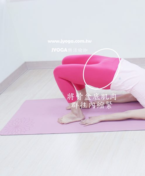 台南JYOGA樂活瑜珈-瑜珈教學-橋式-凱格爾